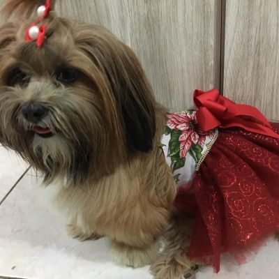 Vestido Natal Brilho 03B- P